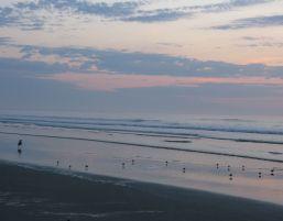 Birdie Beach