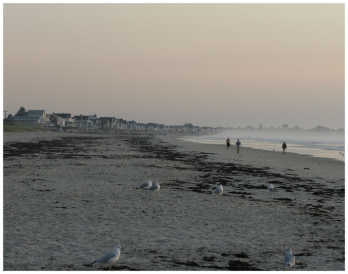 Busy Beach Pre Dawn