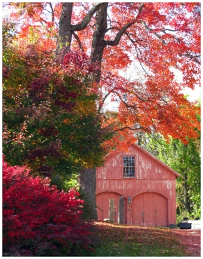 Red barn, red tree, Autumn in Sutton