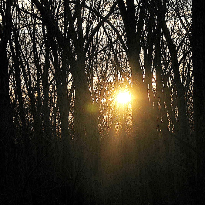 The sun, just above the horizon in April. My woods.