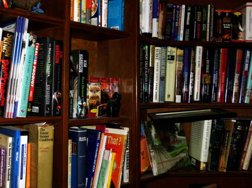 bookcase-1