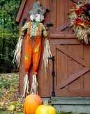 Autumnal Figure on the shed.