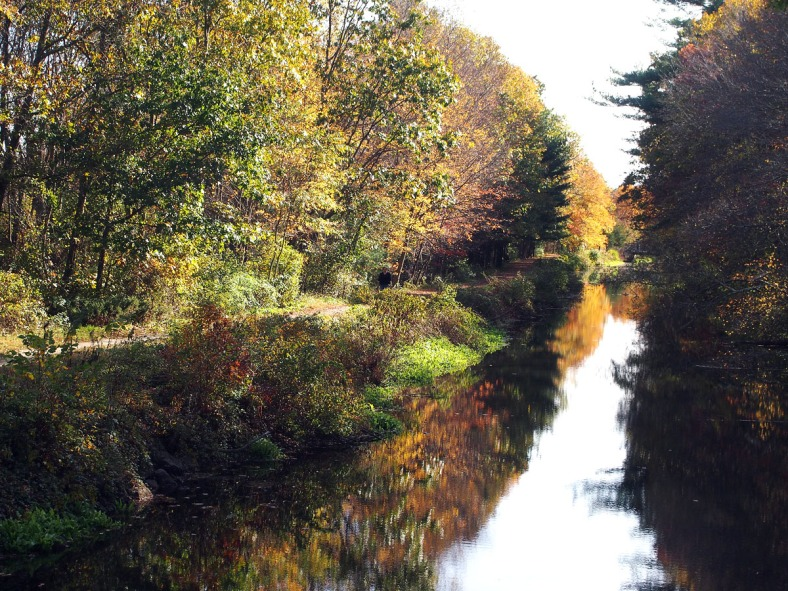 The Canal, mid October 2012 - Photo: Marilyn Armstrong