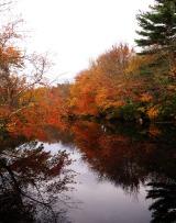 Aldrich River