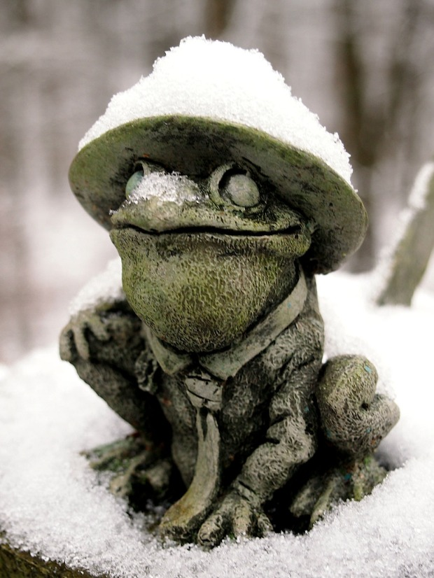 Froggy the Sundial, wearing a snowy hat on the first snow of the year.