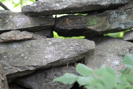 A Stone Fence - Marilyn Armstrong