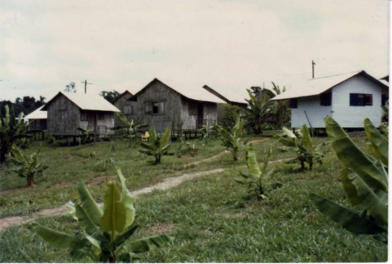 jonestown_cottages