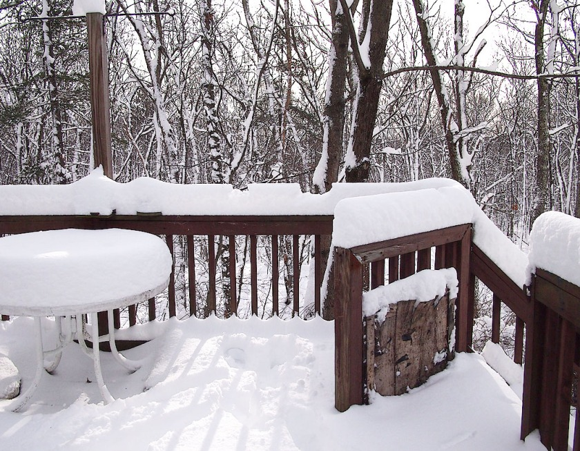 Morning, Dec 30, 2012 ... a real snow blankets our world. Happy New Year!