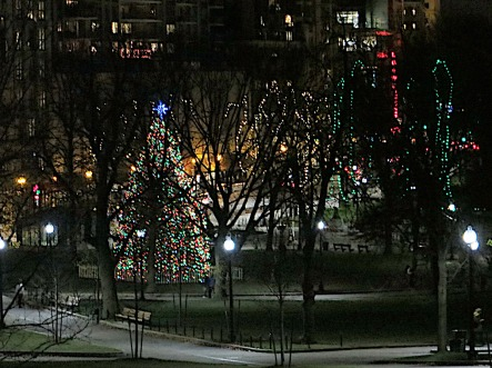 The Big Christmas Tree on Boston Common, lit and ready to be enjoyed by anyone who wants to share in its brightness.