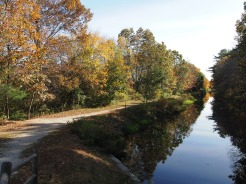 October: Along the Canal