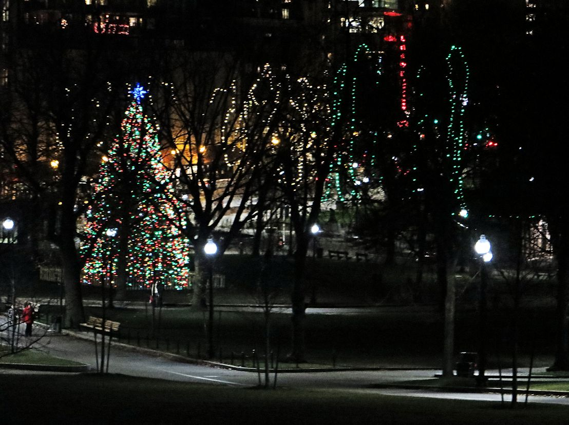 The Commons, lit for the holidays