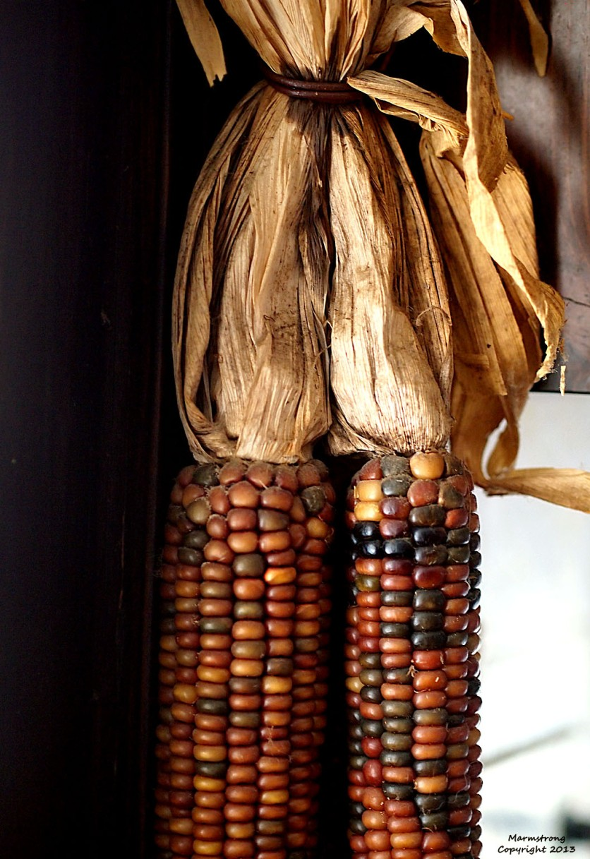 Indian Corn on the Kitchen Window