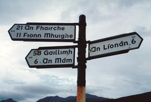 Signs in Irish are full of bullet holes