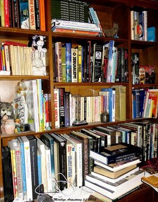 75-BookStory HPCR-1