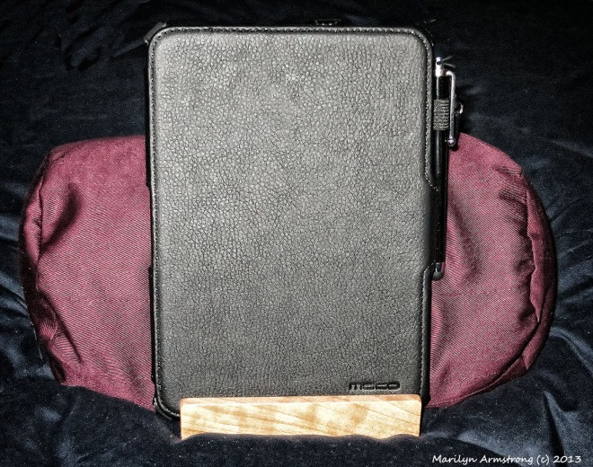 Bamboosa with closed Kindle HD in its hard case.
