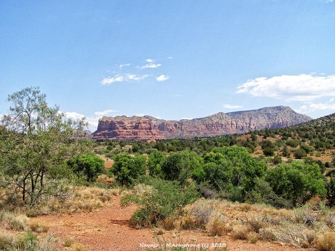Navajo Big Sky