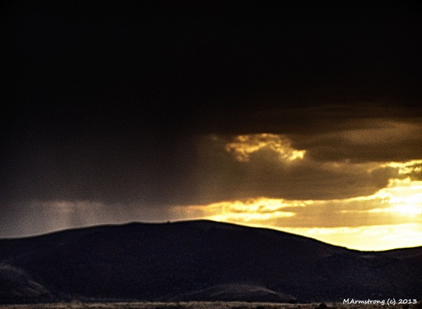 Saguaro Storm Passing