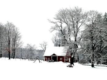 Snow on the farm, December 2013