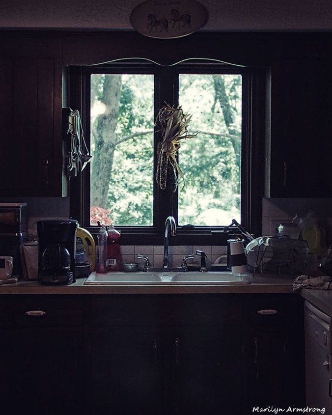 Kitchen Afternoon