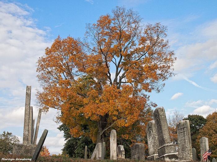 Tombstones cemetery Uxbridge