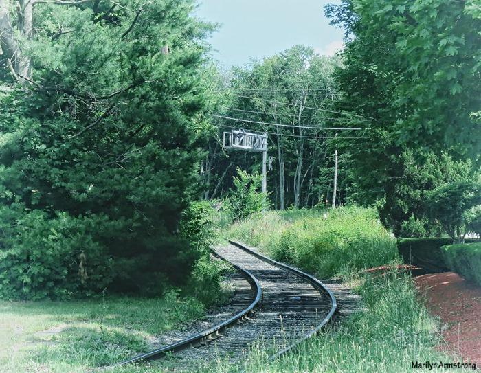 The tracks through Grafton ...