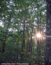 75-Woods&PondNK-19