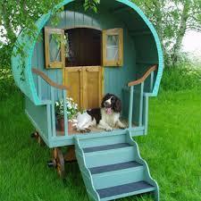 dog caravan
