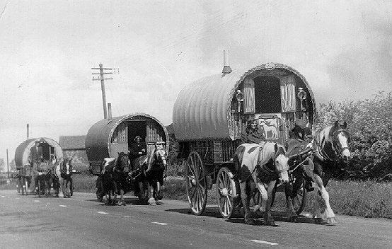 gypsy caravans BW