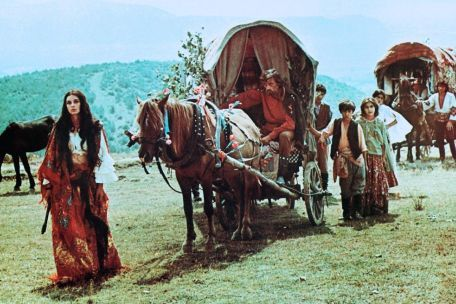 gypsy wagon with hohrse