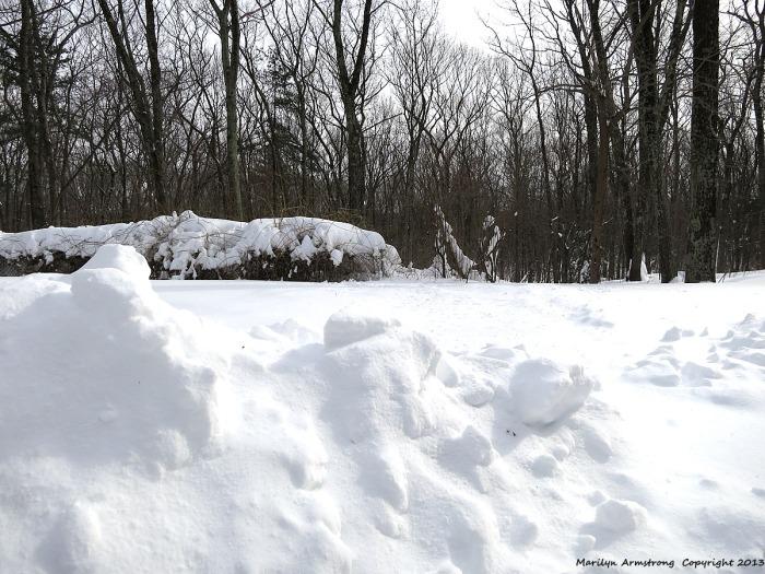 Nemo blizzard, February 2013