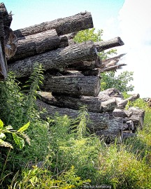 Layers of raw wood piled up for further wood working