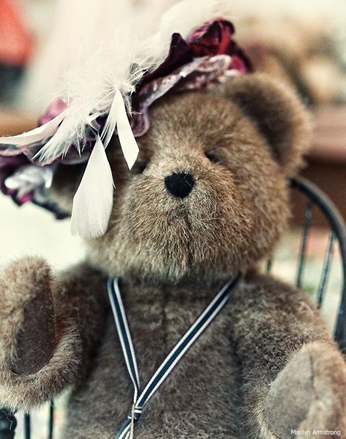 I will always hug Teddy