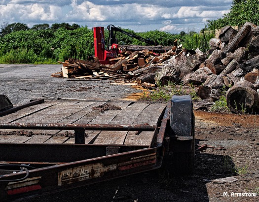 Trailer and logs