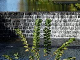 75-Dam-666