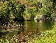 fall river garden