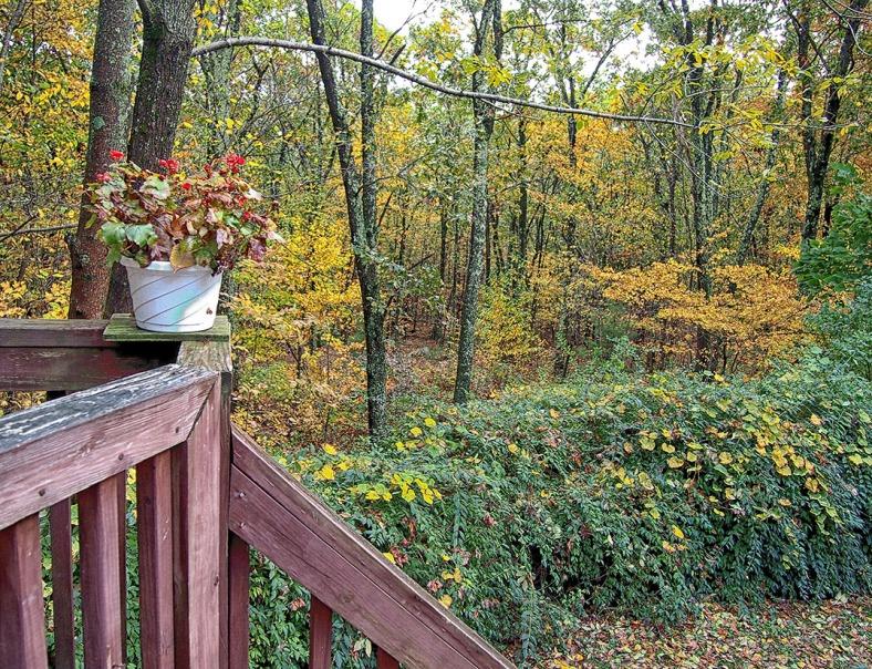 Deck - October