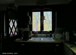 75-OctMorning-09