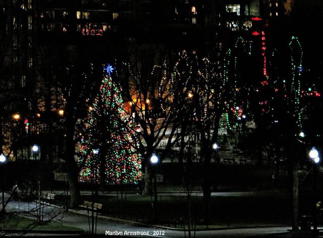 96-ChristmasCommons-12-9-12_134