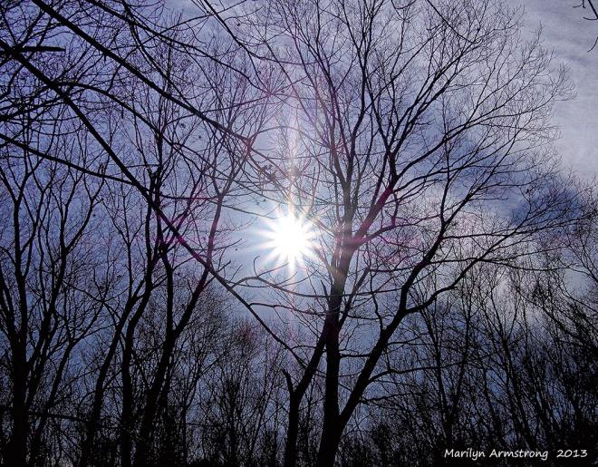 cold sun 8