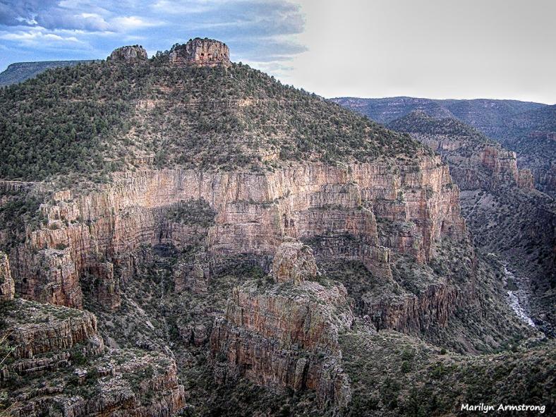 By the Little Colorado Arizona