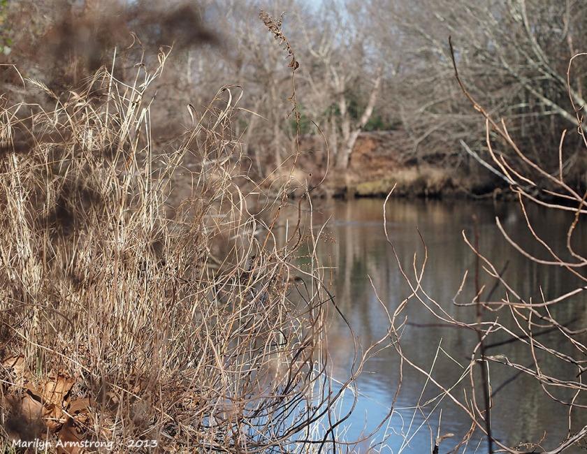 November river