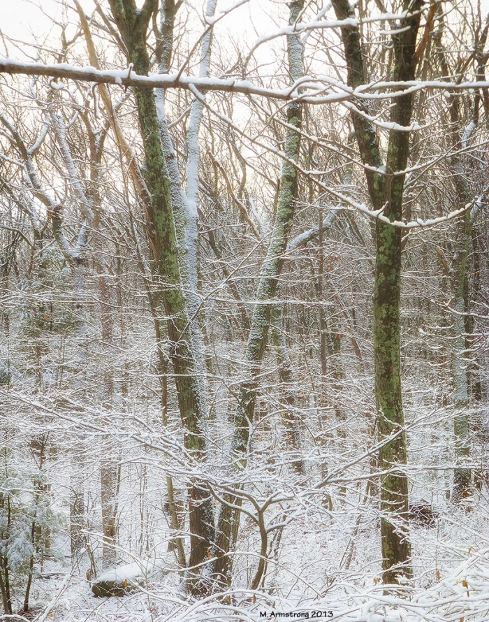 75-Over-FirstSnow_67