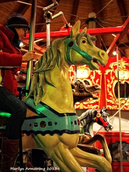 Carousel steeds 45