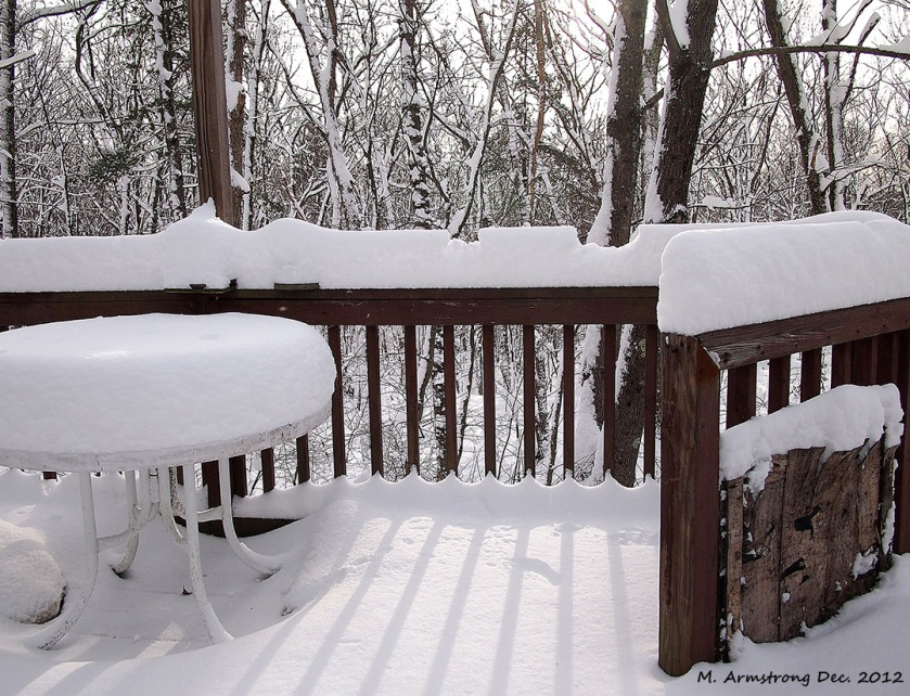 Dec 2012 snow 1