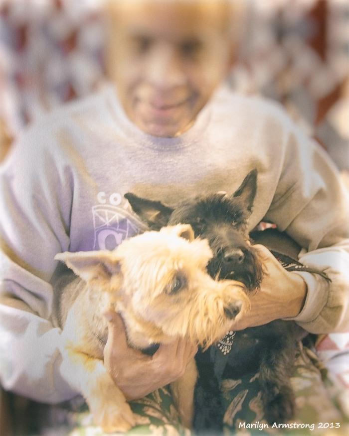 Gar w 2 terriers
