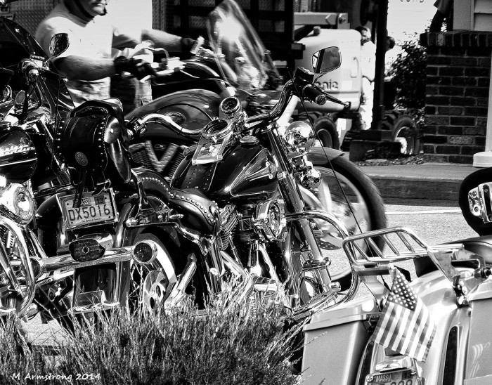 Motorcycles and one rider