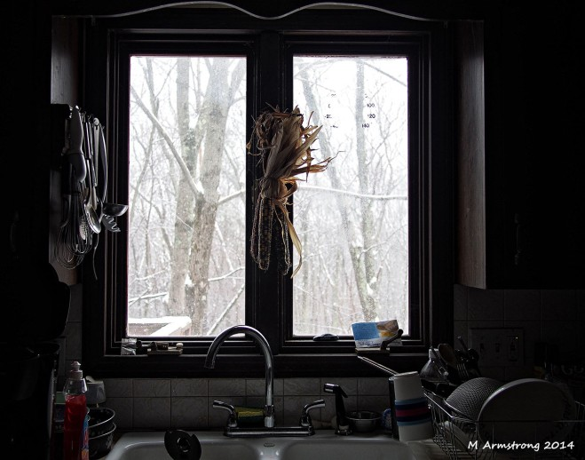 kitchen window january