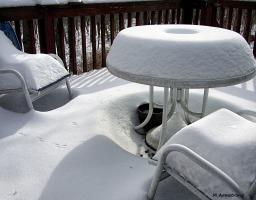 fresh snow deck bird tracks 7