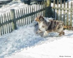 75-Bishop-in-Snow_17