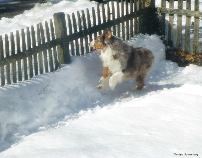 75-Bishop-in-Snow_18
